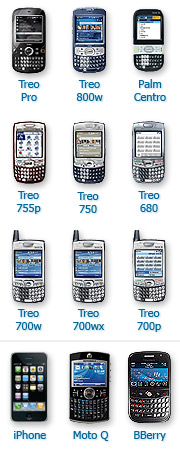 Treo accessories
